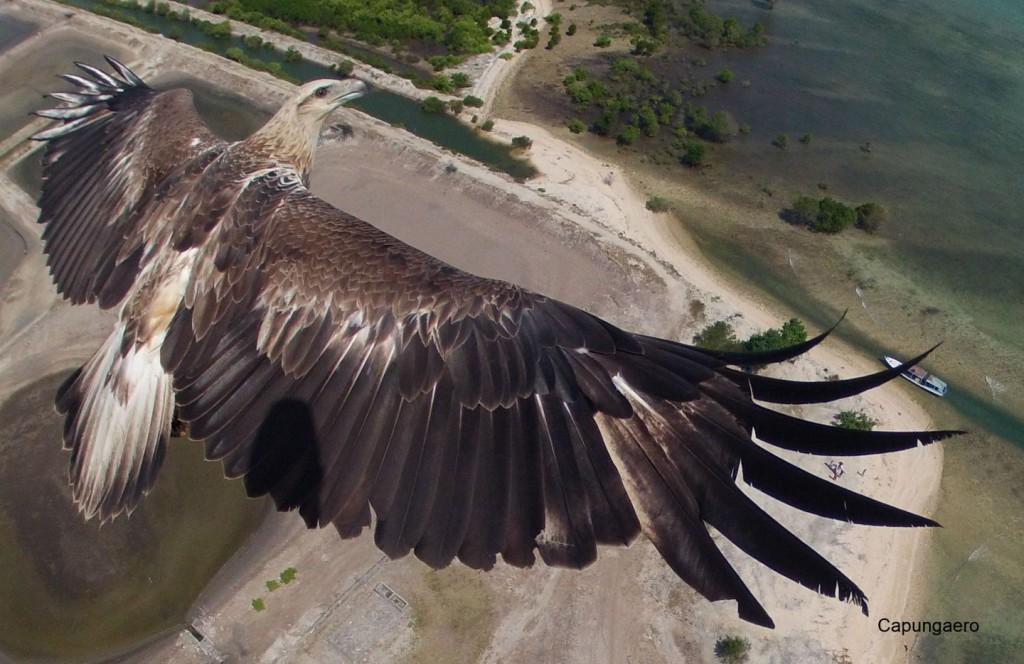 Снимок с беспилотника, Индонезия. IMAGE: CAPUNGAERO/DRONESTAGRAM